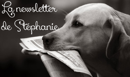 La newsletter de stephanie